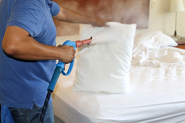 Steamers for Bed Bugs – Complete elimination process